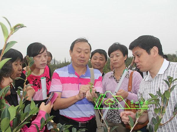 猫先生专家·江西省林业科技推广总站副站长龚兆文、省林科院高级工程师俞亚林电竞指导工作