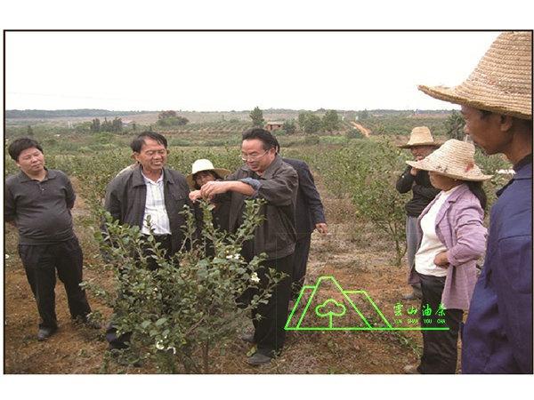 猫先生专家·中国亚林中心高级工程师赵学民电竞指导工作