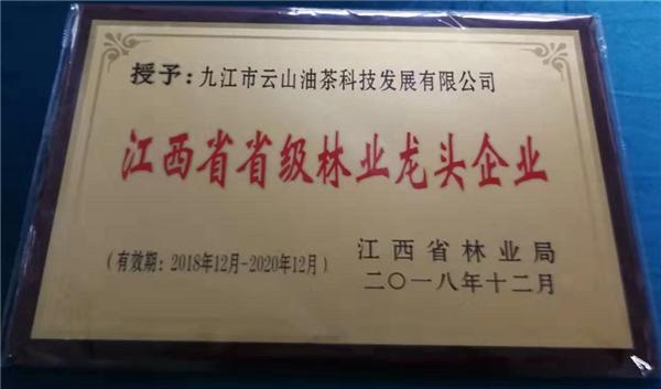 江西省省級林業龍頭企業